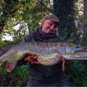 When November Ends – A Pike Fishing Review.