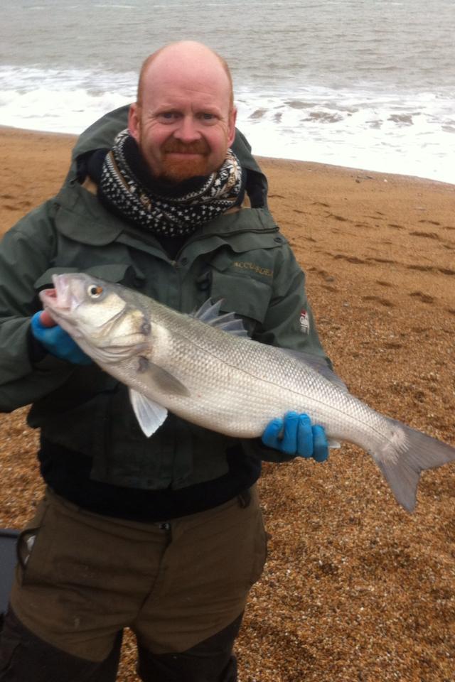 Bass Phil