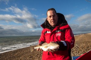 chesil fladen cod