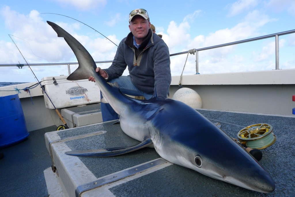 Fly Fishing for Blue Sharks On The UK Coast! |