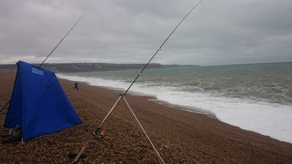 Chesil rough